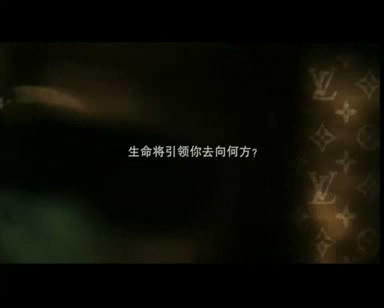 LV电视广告